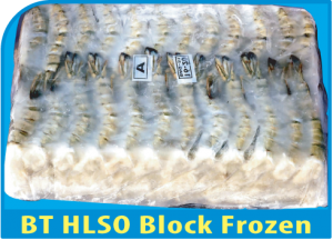 BT HLSO Block Frozen