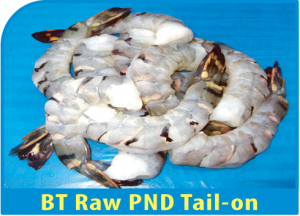 BT Raw PND Tail-on