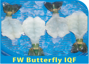 FW Butterfly IQF