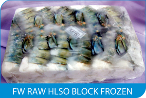 FW RAW HLSO BLOCK FROZEN