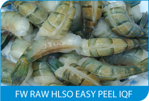 FW RAW HLSO EASY PEEL IQF