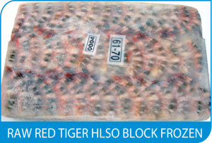 RAW RED TIGER HLSO BLOCK FROZEN